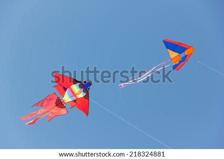 Beautiful kites in a kite festival