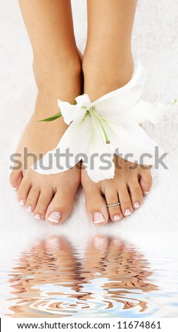 beautiful lady feet with madonna lily in spa - stock photo