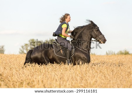 Beautiful lady riding black stallion in field of rye. - stock photo