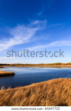 beautiful lake and wetland at autumn - stock photo