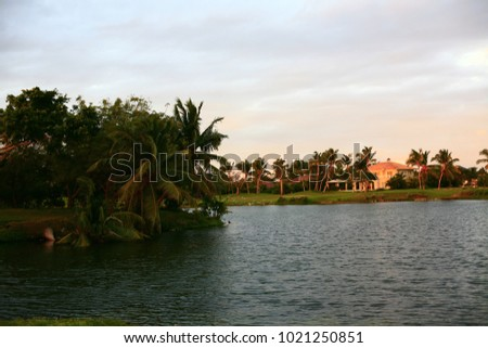 beautiful lake in park at sunset