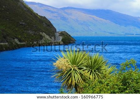 Beautiful lake shore in South Island, New Zealand - stock photo