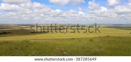 beautiful landscape at the masai mara national park kenya africa - stock photo