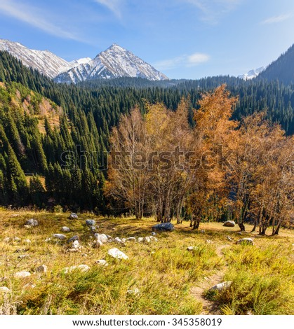 Beautiful landscape - autumn forest and mountain peaks covered with snow, Almaty, Kazakhstan.