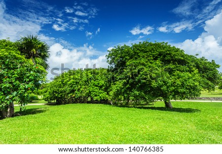 Beautiful landscape, blue cloudy sky, green grass field, leafy trees, sunny day, good weather, spring nature concept - stock photo