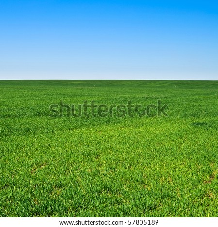 beautiful landscape, clean blue sky - stock photo