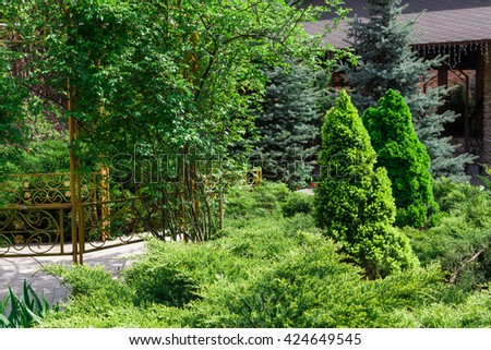 Beautiful landscape design, evergreen trees and shrubs in sunlight. Modern landscaping: Fir trees, blue spruces, arborvitae, thuja, metal fence, shrubs abd bushes. Summer garden or park design. - stock photo