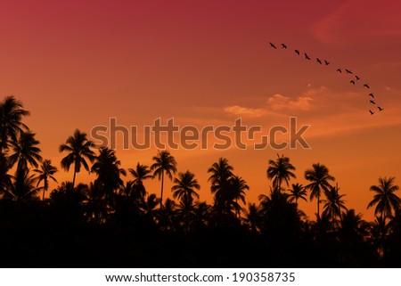 Beautiful Landscape during sunset  - stock photo