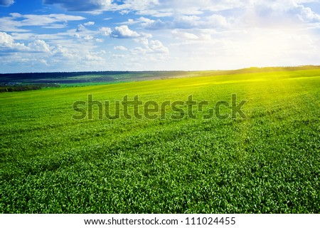 beautiful landscape. green field and clouds - stock photo