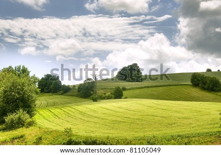 Beautiful landscape, green field and meadows - stock photo