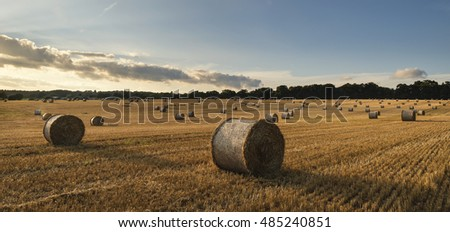 Beautiful landscape image of hay bales in Summer field during colorful sunset