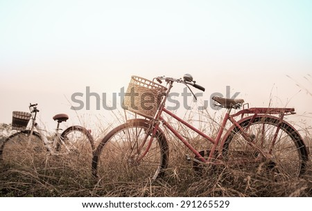beautiful landscape image with two bicycle at sunset ; vintage filter style