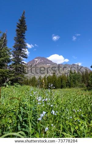 Beautiful landscape in Glacier national park of Montana - stock photo