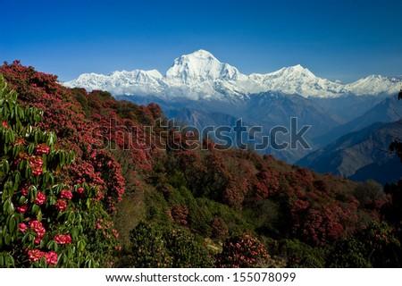 Beautiful landscape in Himalays, Annapurna region, Nepal - stock photo
