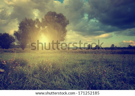 Beautiful landscape in sunset - stock photo