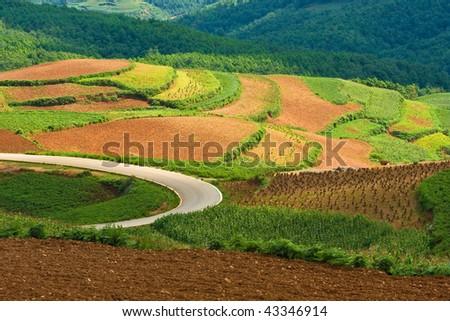 beautiful landscape in yunnan, china (1) - stock photo