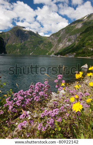 Beautiful landscape of Geiranger fjord (UNESCO heritage), Norway, Scandinavia - stock photo