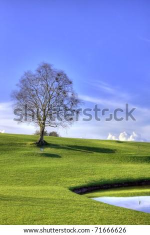 Beautiful landscape of golf club. - stock photo