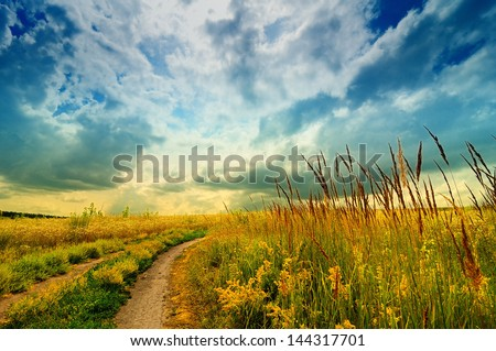 Beautiful landscape of meadow with road, bi-color filter applied