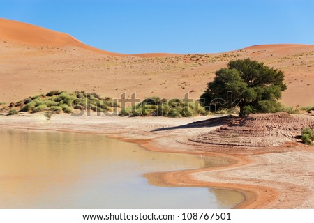 Beautiful landscape of Namib desert dunes, lake and tree. Sossusvlei, Namibia, South Africa - stock photo
