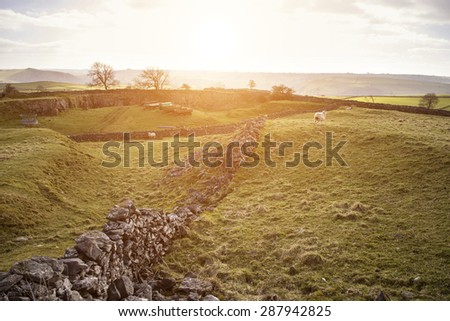 Beautiful landscape of Peak District in UK with famous stone walls - stock photo