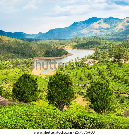 beautiful landscape of tea plantation with mountains and river in India Kerala - stock photo