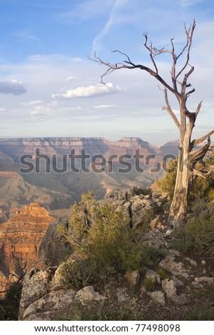 Beautiful Landscape of the Grand Canyon, Arizona. - stock photo