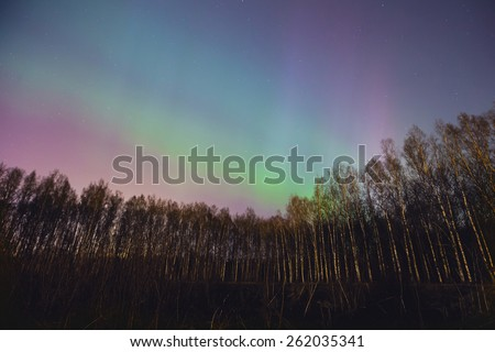 Beautiful landscape panoramic picture of northern lights aurora borealis natural phenomenon over the forest in the night