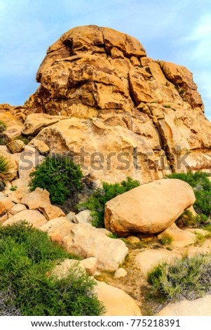 Beautiful landscape view of boulders, red rock formations, grass from the hiking trail in Joshua Tree National Park, California, United States.