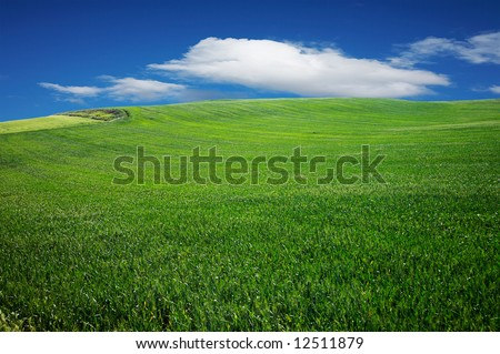 Beautiful landscape with a green field and a blue sky with clouds - stock photo