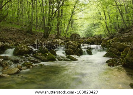 beautiful landscape with a mountain river in Crimea - stock photo