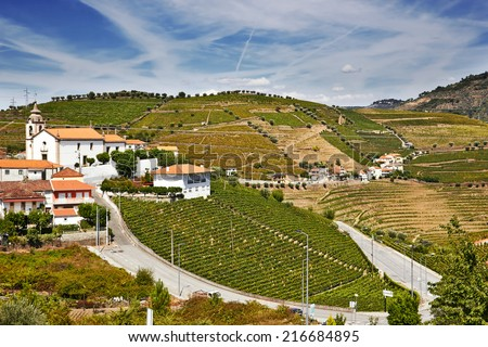 Beautiful landscape with bright green vine cultures in the Douro region, Portugal  - stock photo