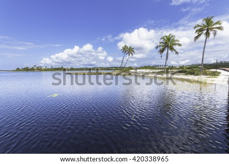 beautiful landscape with coconut trees on the island in the lake paradise in Costa do Sauipe in Bahia Brazil - stock photo