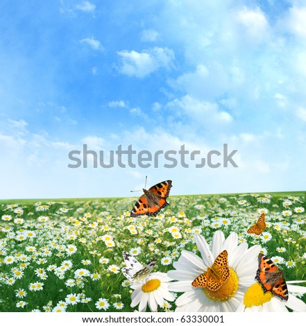 Beautiful landscape with colorful butterflies - stock photo