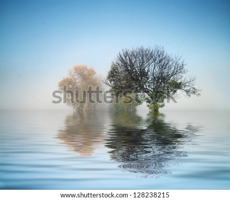 Beautiful landscape with fog - stock photo
