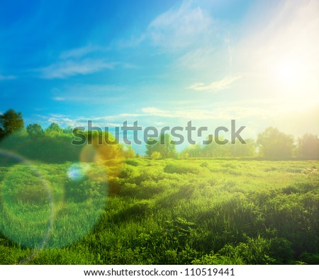 Beautiful landscape with grass, trees, sky and sun. - stock photo