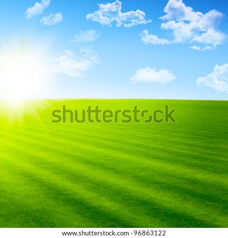Beautiful landscape with green field and sun - stock photo