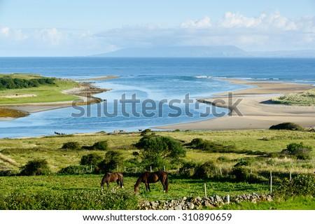 Beautiful landscape with horses in County Sligo, Ireland - stock photo