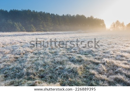 beautiful landscape with morning frost - stock photo