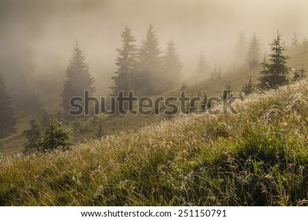 Beautiful landscape with mountain and trees under an amazing dawn sky. Carpathian Mountains. Ukraine. - stock photo