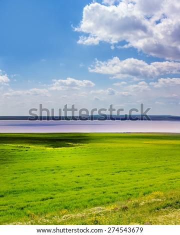 Beautiful landscape with Pink lake, forest and mountains,  Salt Lake, Ankara Turkey - stock photo