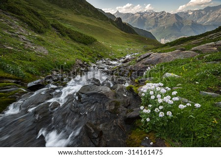 Beautiful landscape with rapid river rock, flowers and high mountains on background - stock photo
