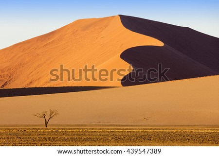 Beautiful landscape with red dunes at sunrise, Sossusvlei, Namib Naukluft National Park, Namibia. Growth of temperature and climatic changes on Earth. Increase in the areas of deserts. - stock photo