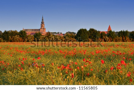 Beautiful landscape with skyline of a small town and a field of poppies - stock photo