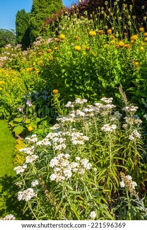 Beautiful landscaped summer garden - stock photo