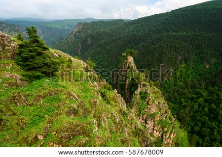 Green mountain range stock images royalty free images vectors amazing view of big rocks with lonely trees and green mountain sciox Gallery