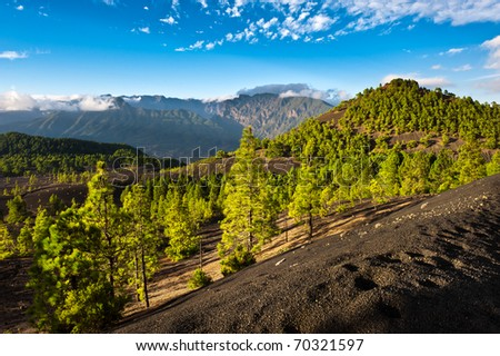 Beautiful lava landscape on the Cumbre Nueva in La Palma, Canary islands, Spain - stock photo