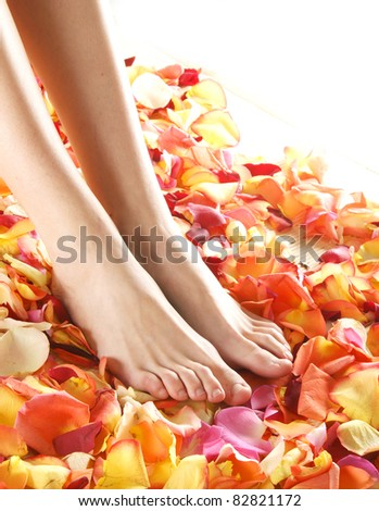 Beautiful legs with the flower petals - stock photo