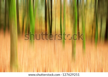 beautiful light in a green and beautiful forest (up/down photo) - stock photo
