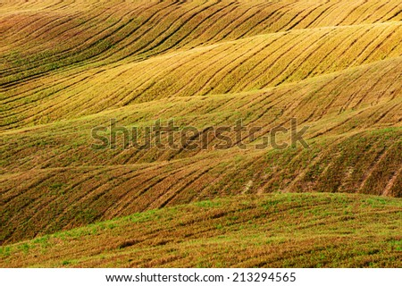 Beautiful light of the morning sun in the Tuscan landscape - stock photo